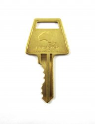 Safety Lockout padlock key